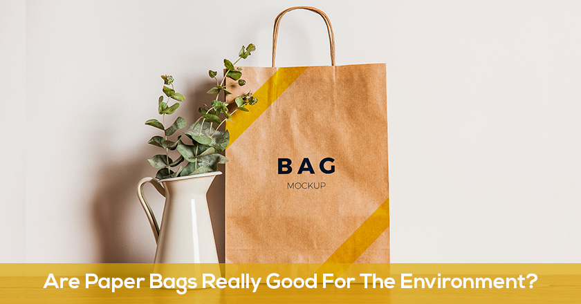 Are Paper Bags Really Good For The Environment?