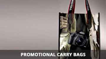 carry bags online